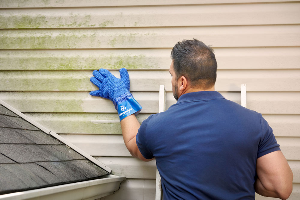 home exterior cleaning siding